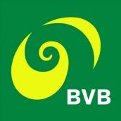 Tram BVB